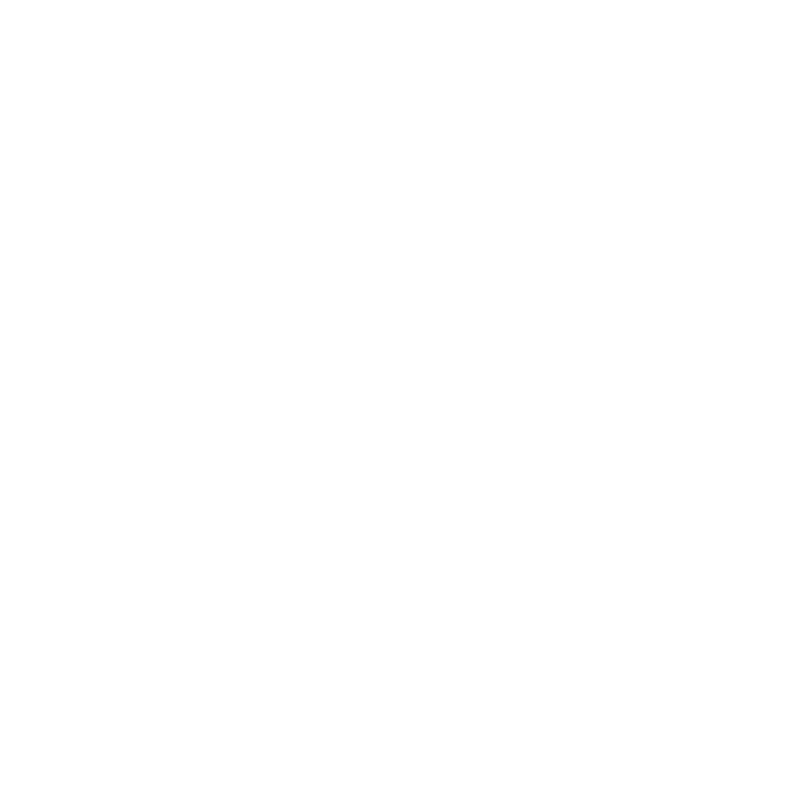 Priority Graphics Logo